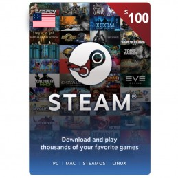 Steam 100 Dollar (USA)
